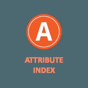 ATTRIBUTE INDEX
