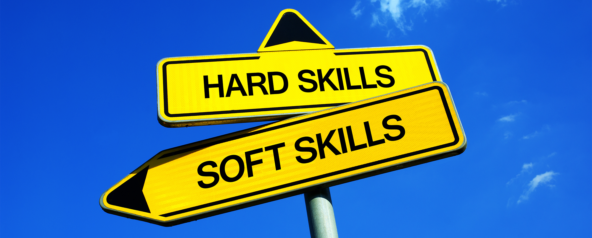 Hired for hard skills OR fired for soft skills!! Find a proven and tested method for cultural fit!!